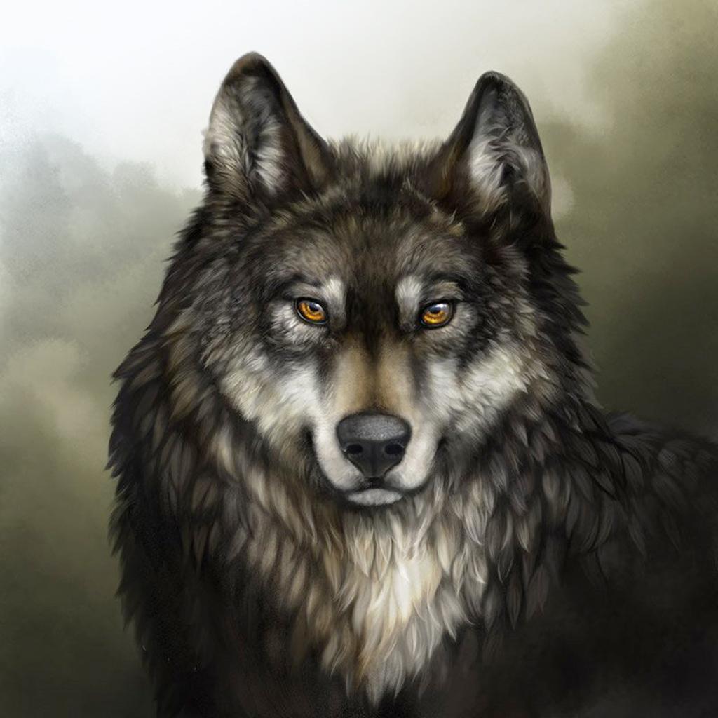 Красивые картинки на аву волки